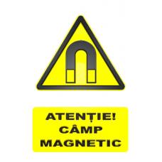 indicatoare pentru camp magnetic