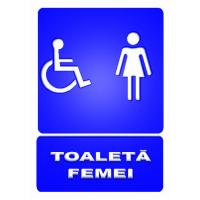 indicatoare pentru toalete persoane cu dizabilitati