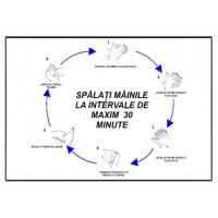 indicatoare spalati mainile la intervale de maxim 30 de minute